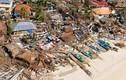 Những cơn bão chết chóc nhất trong lịch sử Philippines