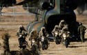 Lực lượng Phòng vệ Nhật Bản tập trận đầu năm mới