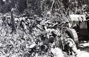 Giải mã pháo binh Việt Nam trong trận Điện Biên Phủ (1)
