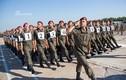 Lôm côm đội hình duyệt binh của Vệ binh Quốc gia Ukraine