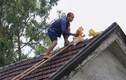 Ảnh: Dân miền Trung hối hả gia cố nhà cửa trước bão mạnh