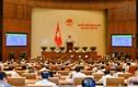 Quốc hội làm gì trong ngày làm việc cuối cùng của kỳ họp thứ 3?