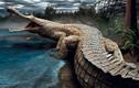 Tổ tiên siêu khủng của động vật hiện đại