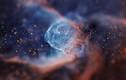 Ảnh thiên hà... vi sinh vật đẹp như những viên đá quý