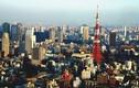 Tokyo: Thủ đô lạ lùng nhất thế giới?