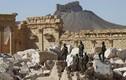 Sắp thất thủ Raqqa, phiến quân IS mưu toan tái chiếm Palmyra