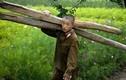 Ảnh hiếm chọn lọc về đất nước-con người Triều Tiên