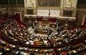 Bầu cử Quốc hội Pháp: Đảng của ông Macron thắng khiêm tốn hơn dự đoán