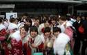 Top khám phá gây sốc về Nhật Bản