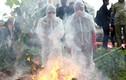 Ảnh: Diễn tập phòng chống cúm A/H7N9 ở Lạng Sơn