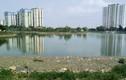 Ảnh: Kinh hoàng cảnh bát hương và rác bẩn ngập hồ Đền Lừ - Hà Nội