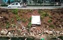 Ảnh: Đường mới sửa xong lại sạt lở đáng sợ ở Hà Nội