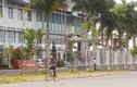 BCĐ Tây Nam Bộ xử lý hàng loạt cán bộ sai phạm