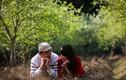 Giới trẻ rủ nhau đi hưởng cảm giác lãng mạn ở vùng cao