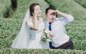 """Ảnh cưới ở VN của cặp đôi Đài Loan """"chưa từng chán nhau"""""""