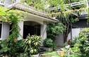 Cận cảnh nhà vườn 300m2 của Cao Thái Sơn