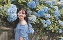 Lên Cao Bằng check-in vườn hoa cẩm tú cầu đẹp đến ngỡ ngàng
