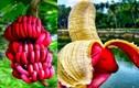 """Những loại trái cây lạ đang """"gây sốt"""" trên thị trường Việt"""
