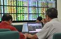 Cuối tháng 2, cổ phiếu nào sẽ gây nóng thị trường?