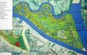 Dự án đảo sinh thái tỷ đô của Vingroup được thông qua