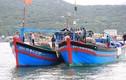 Tàu cá Việt Nam bị đâm tới tấp ngư dân rớt xuống biển