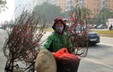 Ảnh: Tết về trên những xe chở đào rong khắp phố Hà Nội