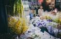Ảnh: Đêm trước ngày 8/3 ở vựa hoa lớn nhất Sài Gòn