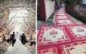 Đám cưới độc nhất Việt Nam: Trải chiếu hoa từ nhà ra ngõ