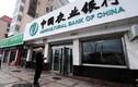 Ngân hàng Nông nghiệp TQ sẽ thành lập chi nhánh tại VN