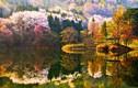 Mùa thu Hàn Quốc đẹp huyền ảo làm say lòng dân phượt