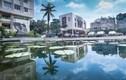 Sinh viên ĐH Văn hóa hãnh diện vì trường đẹp như công viên