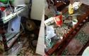 Mới thuê được 20 ngày, nữ sinh biến nhà thành bãi rác