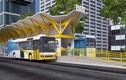 Dừng triển khai tuyến buýt nhanh BRT số 1 ở TP HCM