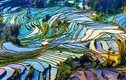 Ngẩn ngơ ngắm ruộng bậc thang đẹp khắp châu Á
