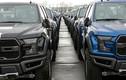 """Xe bán tải hạng nặng Ford """"dính án"""" triệu hồi"""