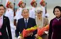 Ảnh: Nhà vua Nhật Bản và Hoàng hậu đến Hà Nội thăm Việt Nam