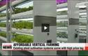 Khám phá trang trại trồng rau nhiều tầng kỳ diệu
