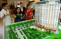Chiêu trò lợi dụng bán nhà chung cư trên thị trường