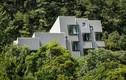 """Thăm ngôi nhà độc đáo """"mọc"""" giữa rừng ở Hàn Quốc"""