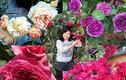 Vườn hoa hồng quý hiếm, đẹp như thiên đường của mẹ Việt xa xứ