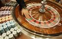 """Chân dung """"Vua nghỉ dưỡng"""" Macau đầu tư casino tại VN"""