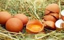 Trứng nhiễm thuốc trừ sâu có ở 40 nước, nghi dùng làm bánh
