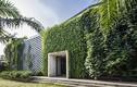 Văn phòng 8.000m2 rợp bóng cây xanh giữa Sài Gòn