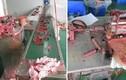 Hoảng hồn hình ảnh bên trong cơ sở sản xuất son giả