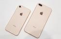 """Soi điểm yếu khiến iPhone 8/8 Plus vừa ra mắt đã bị """"ném đá"""""""