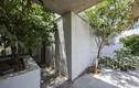 Báo ngoại choáng với nhà có cây đâm xuyên ở Sài Gòn