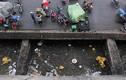 Hình ảnh chợ An Đông xuống cấp thảm hại khiến tiểu thương nổi giận