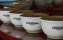 Cà phê đắt nhất hành tinh 30 triệu đồng/kg có gì đặc biệt?