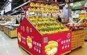 Hình ảnh xuất khẩu chuối khiến bầu Đức lãi khủng