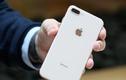 Tiết lộ sự thật gây sốc về chiếc iPhone 8 Plus